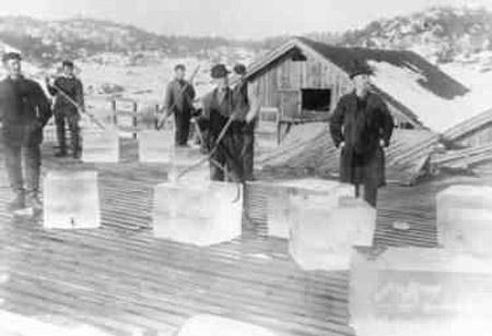 Historia del hielo